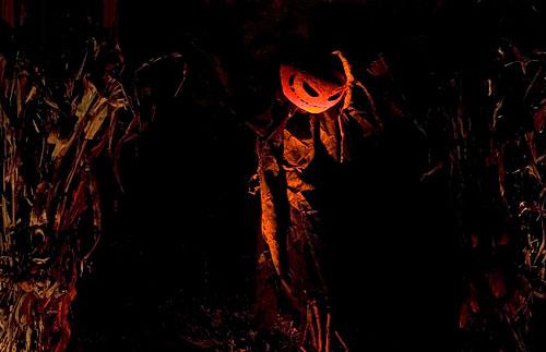 scarecrow prop up for halloween 2007 - Halloween Corn Stalks